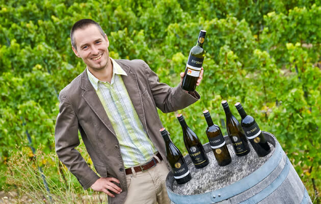 Steyrer vínabezhistamínu
